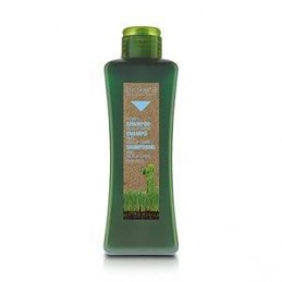 BIOKERA SCALP CARE SHAMPOO...
