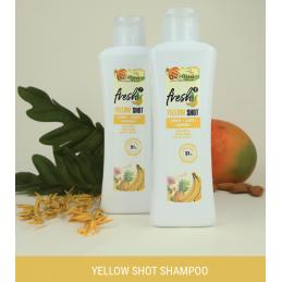 TESTER 10 ml+10 ml.. SALERM BIOKERA Yellow Shampoo + Mask