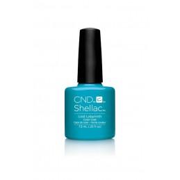 Shellac nail polish - LOST...